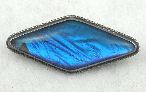 Brooches - Butterfly Wing Sterling Brooch